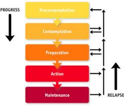 trans theory model